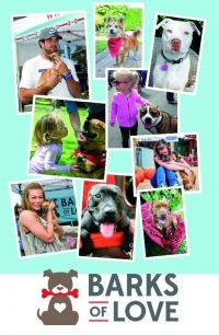 Dog Foster adoption marketing brochure